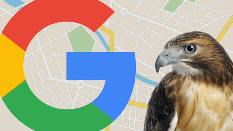 google-local-hawk-update-ss-1920-800x450.jpg