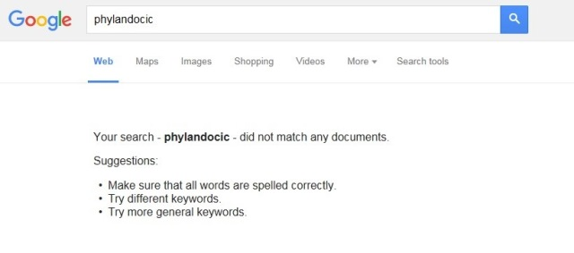 phylandocic-no-results-google2.jpg